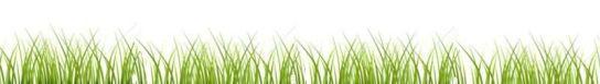 grassbanner1