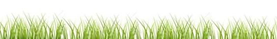 grassbanner4